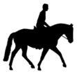 Equine_Logo2